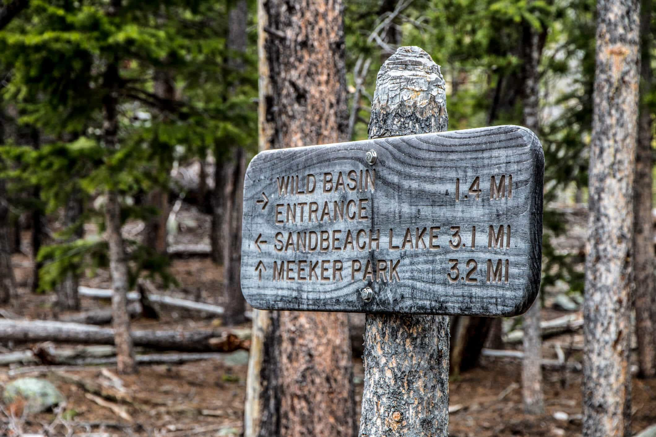 Trail Marker on Sandbeach Lake Trail