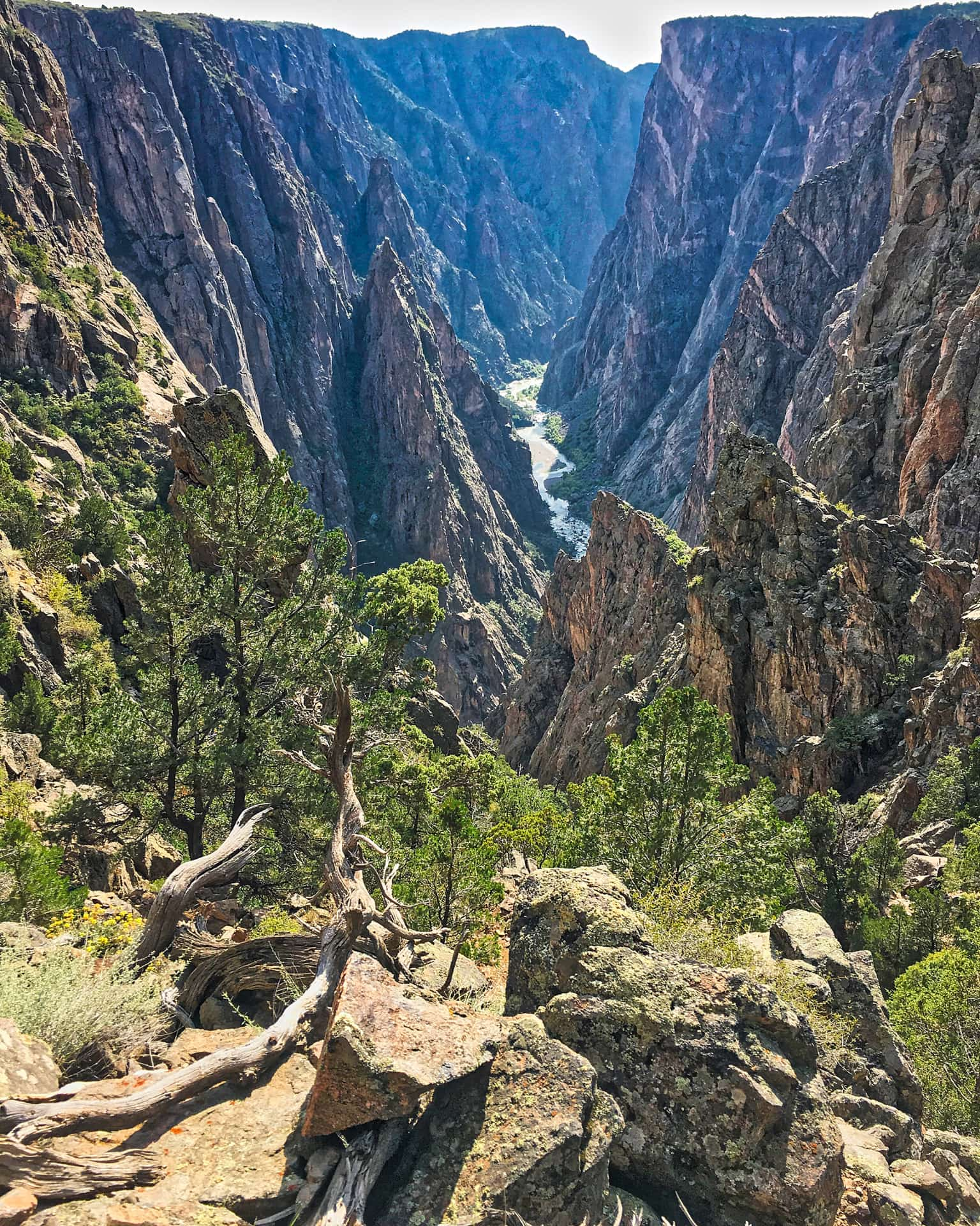 Black Canyon of the Gunnison from the SOB Draw