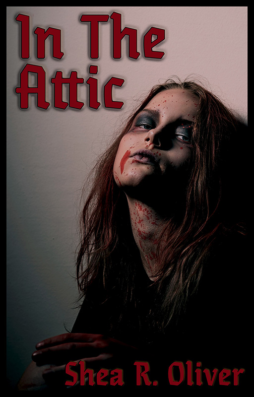 In The Attic - Book Cover