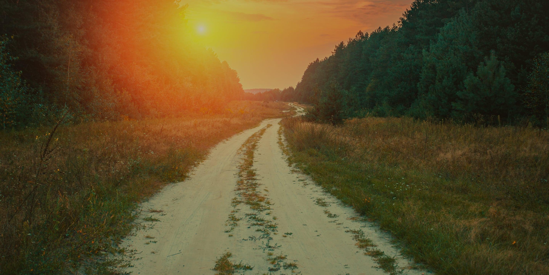 The Soulless Sunrise – Header