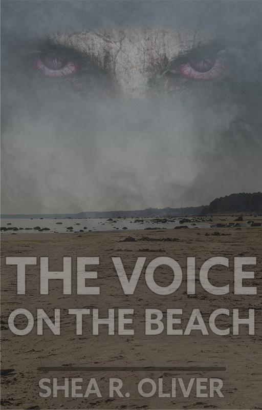 The Voice on the Beach - Book Cover