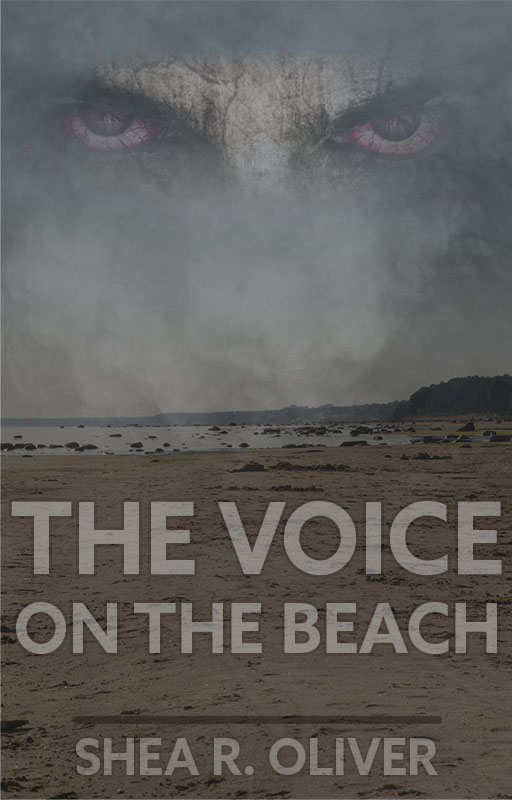 The Voice on the Beach Cover 512x800
